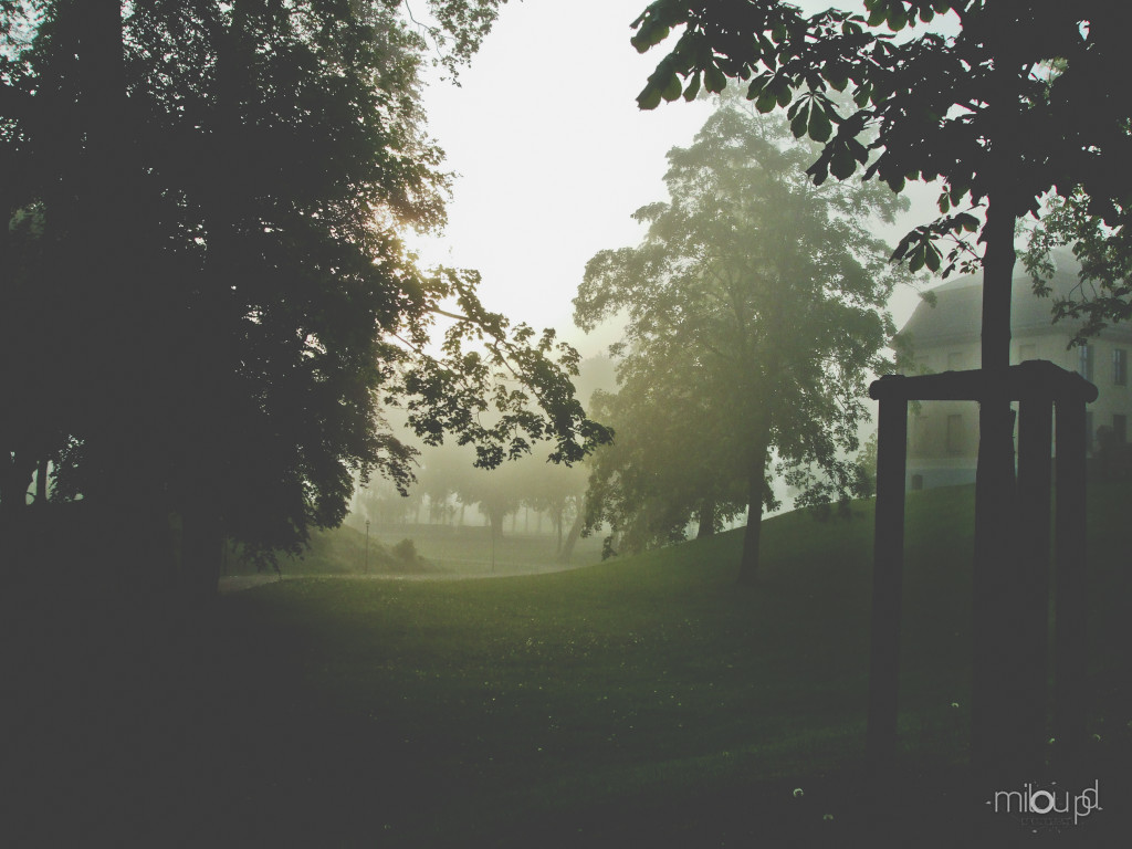 Fotografieren im Herbst - Nebel