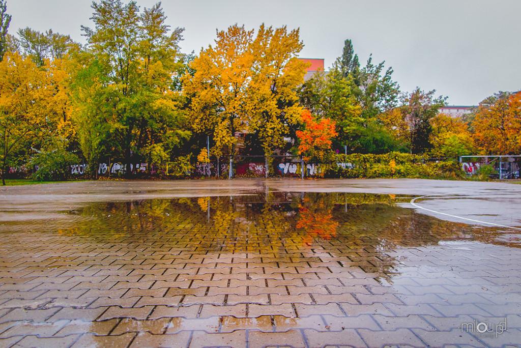 6 Fotoideen fürs Fotografieren im Regen - Pfütze