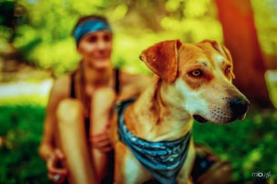 Der beste Freund des Menschen - Steffi und Hund - miloupd-6